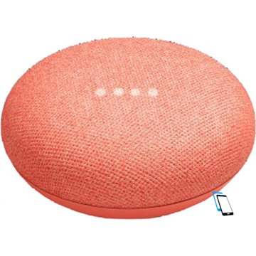 Google Home Mini Coral Rot