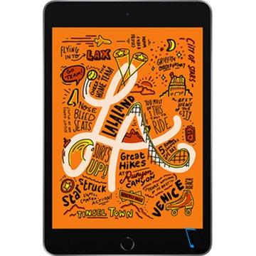 Apple iPad Mini (2019) WiFi + Cellular 256GB Grau